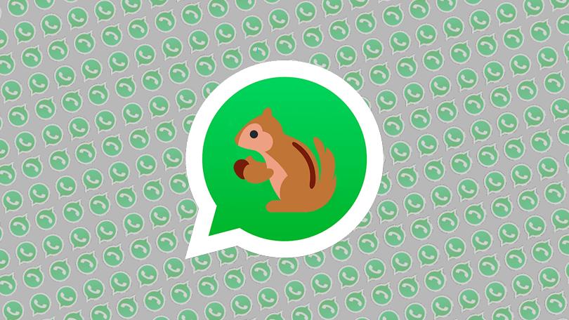 Bug do WhatsApp: conheça o erro causado por emojis