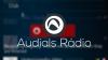 Audials Rádio para iOS download - Baixe Fácil