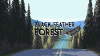 Black Feather Forest para Linux download - Baixe Fácil