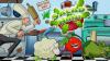 Salad Hunt para iOS download - Baixe Fácil