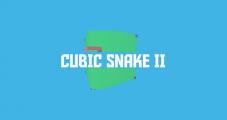 Cubic Snake II