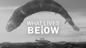Baixar What Lives Below para Linux