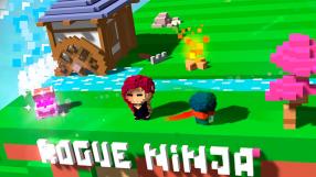 Baixar Rogue Ninja para iOS