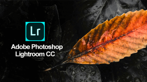 Baixar Adobe Lightroom CC para Windows