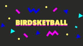 Baixar Birdsketball
