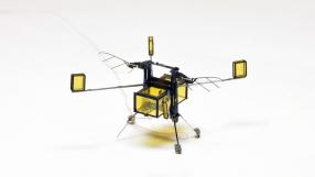 NASA vai usar abelhas-robôs para explorar Marte