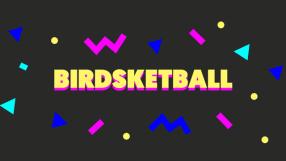 Baixar Birdsketball para Mac