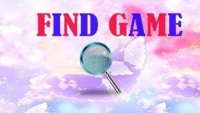 Baixar Find Game