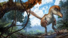 Jurassic Park? Cientistas encontram cauda de dinossauro preservada em âmbar