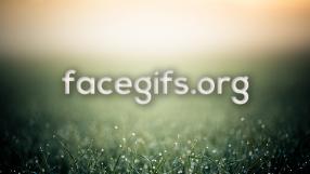 Baixar Facegifs.org