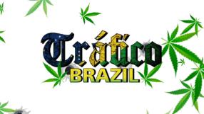 Baixar Tráfico Brazil