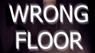Wrong Floor para Windows