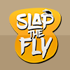 Baixar Slap The Fly