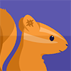 Baixar Squirrel – Group chat